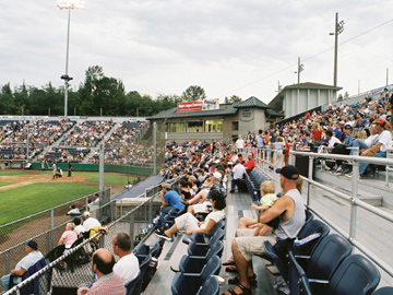 Ballpark Gallery World War Memorial Stadium 2004